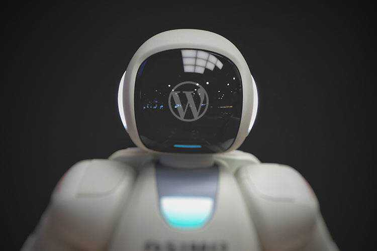 Example from Should You Use WordPress Auto Updates?