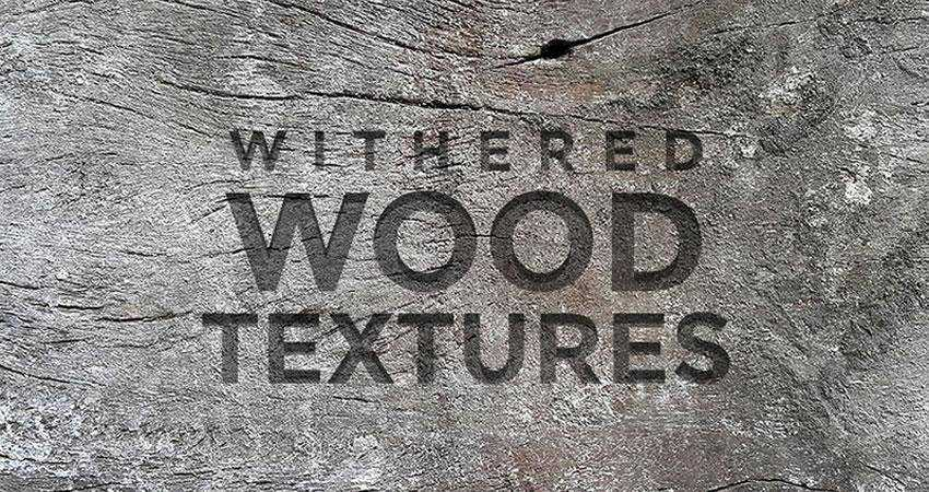 Withered Wood free high-res textures