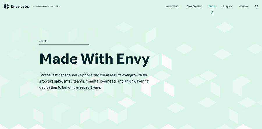 Envy Labs about team employee page web design inspiration
