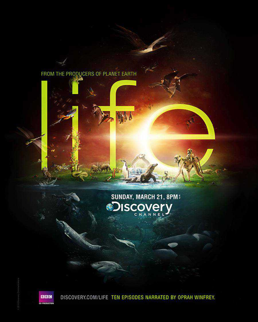 The Discovery Channel - Life inspirational typography print ads