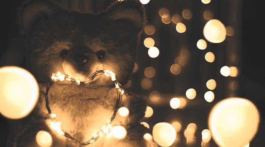 Cuddly Bear lights bokeh photography inspiration