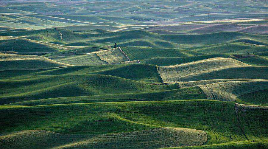 Gentle Gree Hills Fields desktop wallpaper hd 4k high-resolution