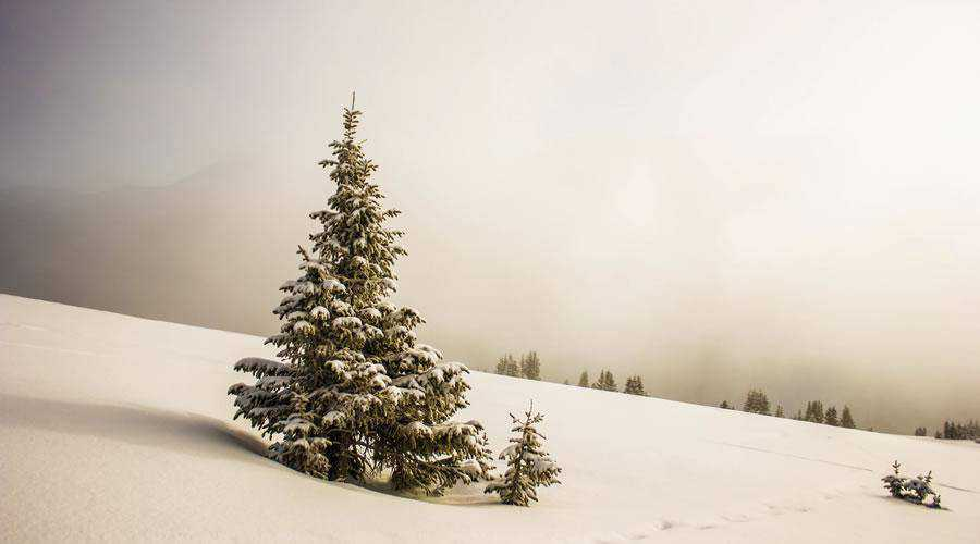 50 Beautiful Christmas Wallpapers For Your Desktop