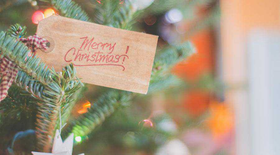 Greeting Card Calligraphy on Tree christmas hd wallpaper desktop high-resolution background