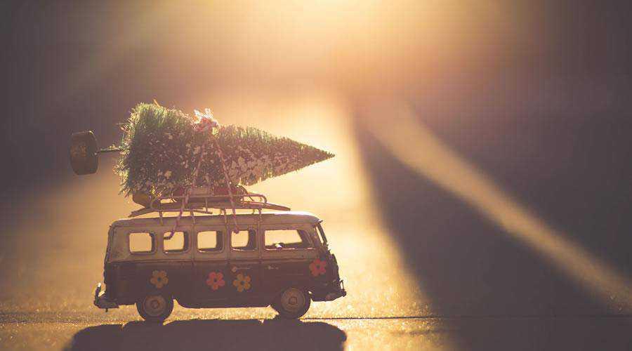 Bringing Home the Christmas Tree hd wallpaper desktop high-resolution background