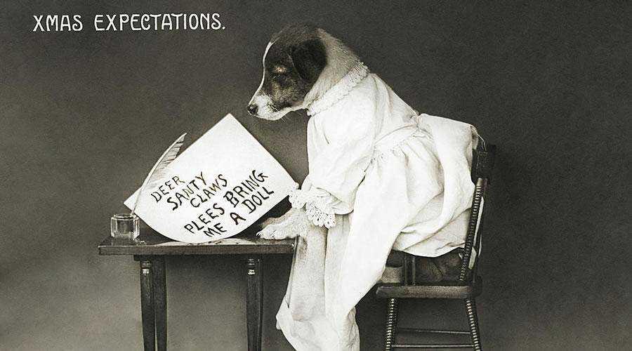 Small Dog Writing a Christmas Card hd wallpaper desktop high-resolution background