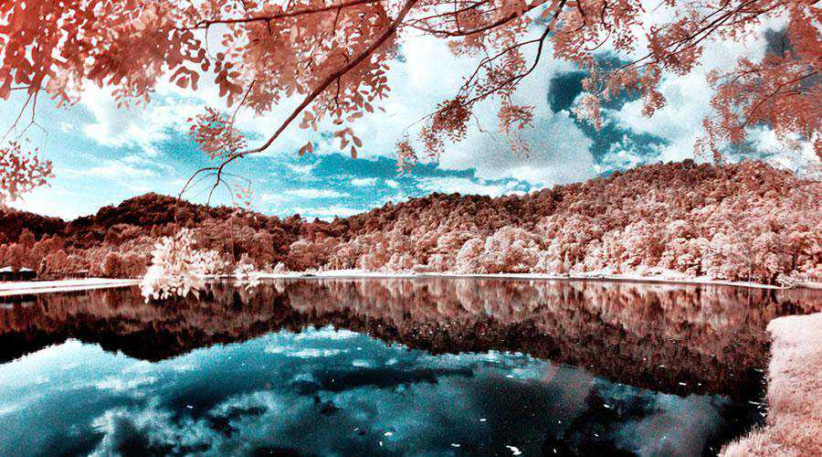 shot infrared Infrared Reflections inspiration