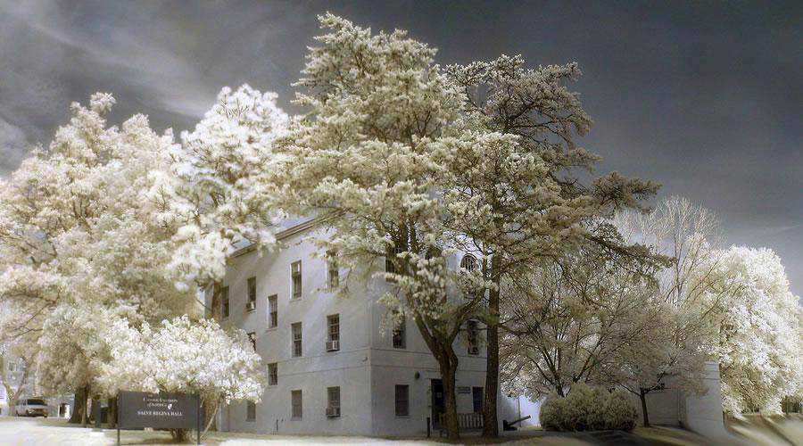 shot infrared Catholic University inspiration