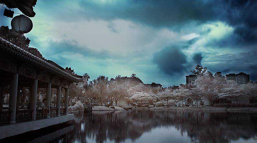 shot infrared Chinese Gardens inspiration