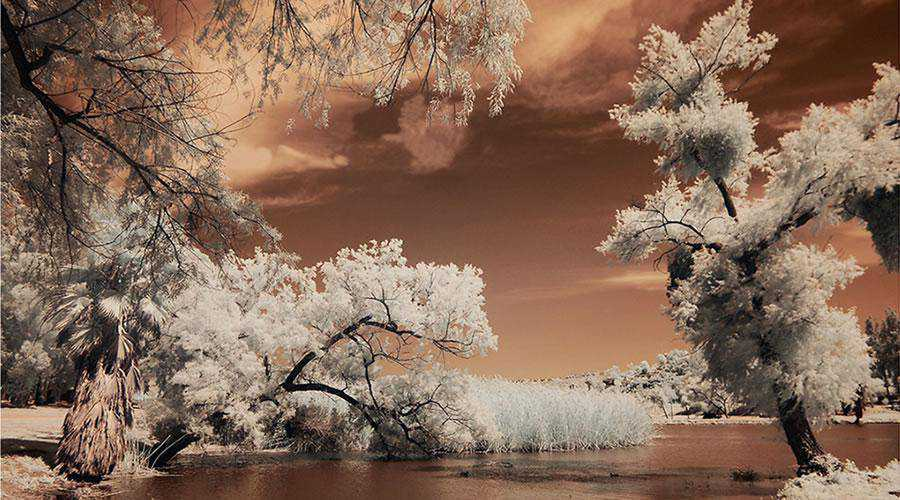 infrared photography Lindo Lake Infrared inspiration