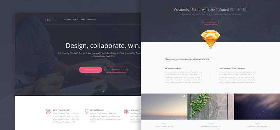 Sedna One Page Website Template