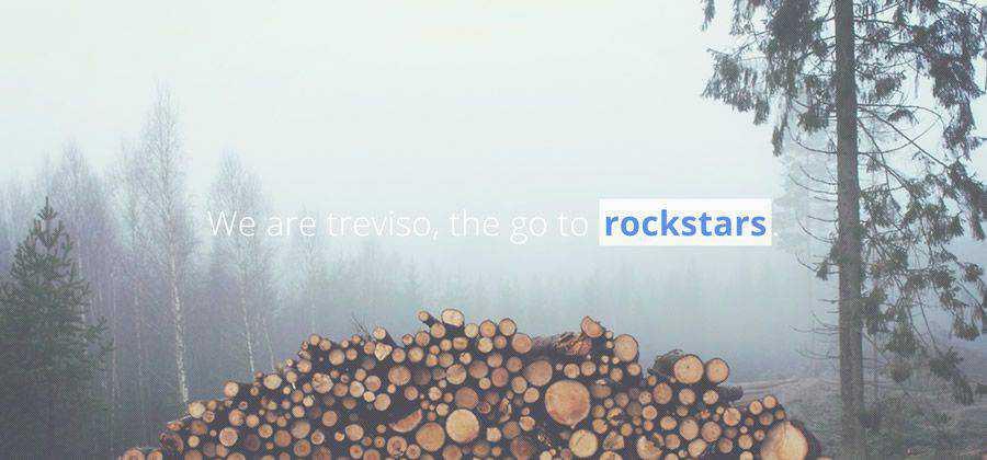 Treviso clean portfolio html css psd Responsive template web-design free