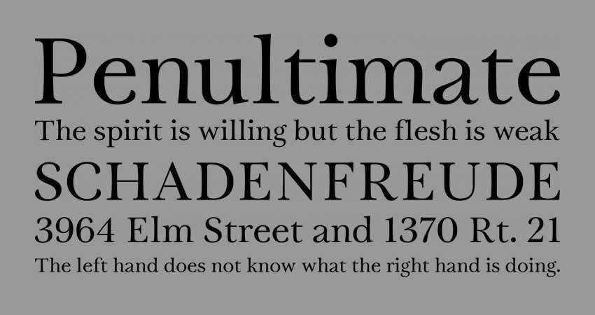 Serif Free Font Designers Creatives Tryst Regular Typeface