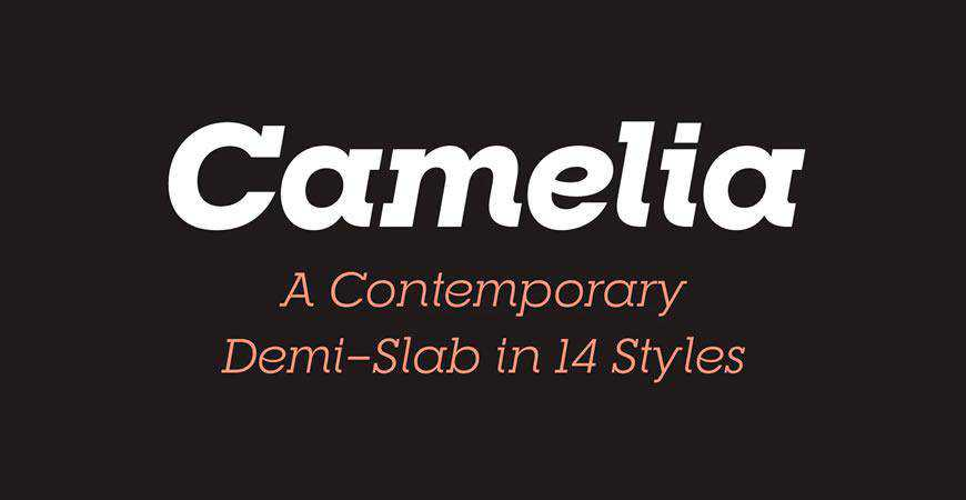 RNS Camelia free title headline typography font typeface