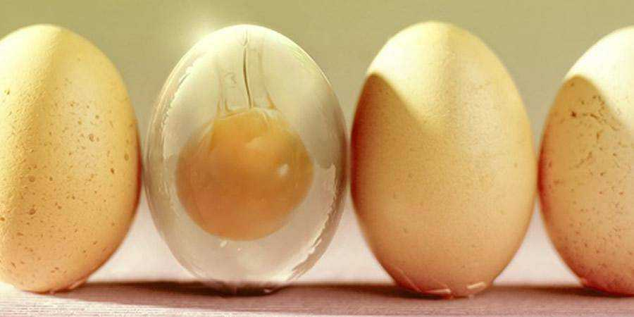 Glass Egg Tutorial Photoshop Tutorial