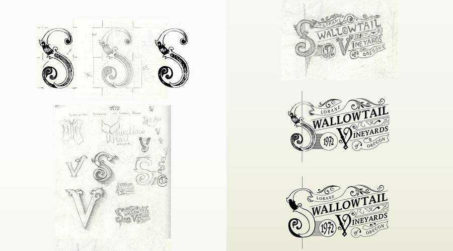 Swallowtail Vineyards Logo Progression design sketch paper pencil pen inspiration