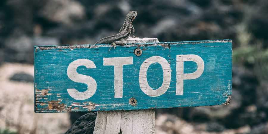 stop rustic sign lizard