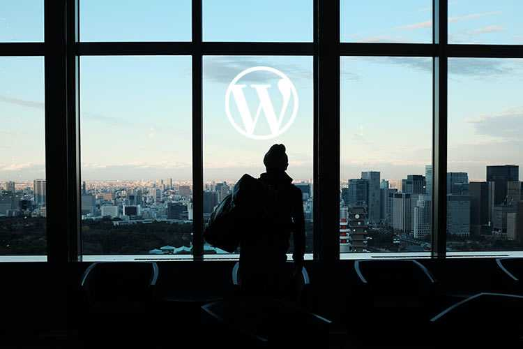 Example from WordPress Plugin Acquisitions: What They Say About the Future
