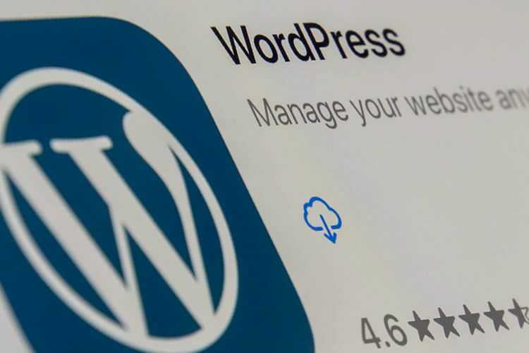 Scenarios Where WordPress May Not Be the Best Option