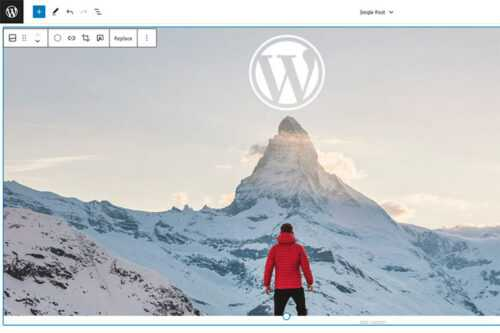 Example from Will Full Site Editing Help WordPress Themes Finally Reach Their Potential?