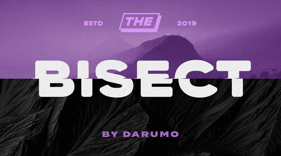 Bisect Free Display quirky creative font family typeface